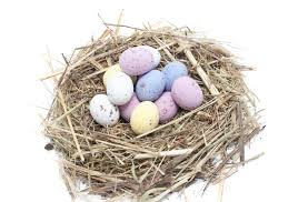 free stock photo 5062 easter egg nest freeimageslive