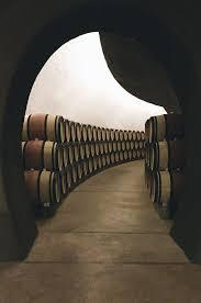autumn in wine country erika brechtel