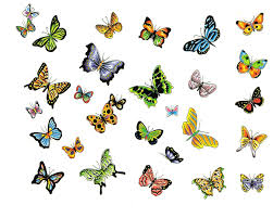 awesome butterflies designs tattooshunt com