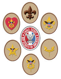 Citizenship In The Community Merit Badge Worksheet Path To Eagle Scout Scout Tenderfoot Second Class First Class