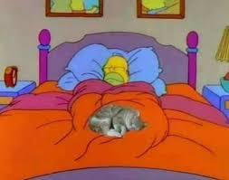 Homer Meme - homer simpson meme tumblr