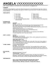 sales resume experienced
