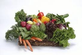 how often should you fertilize a vegetable garden home guides