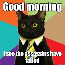 Good Morning Cat Meme - good morning i see the assassins cat meme cat planet cat planet