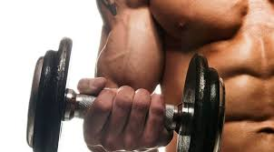 build bigger biceps workout routine fitness