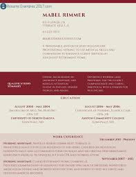 Professional Resume Online by Professional Resume Example To Try Resume Examples 2017