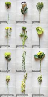 wedding flowers list 175 best flower recipe guides images on floral