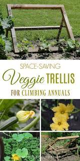 diy trellis for climbing fruits and veggies wire mesh veggies and diy trellis