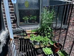 how to build a spiral herb garden 2 balcony herb garden bunnings