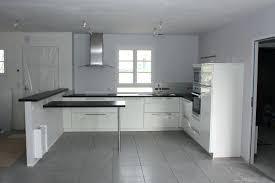 cuisines blanches et grises quel peinture pour cuisine charmant carrelage gris clair quelle