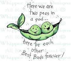 Two Peas In A Pod Meme - two peas in a pod friendship rubber sts shop w sts i
