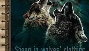 Three Wolf Moon Meme - three wolf moon
