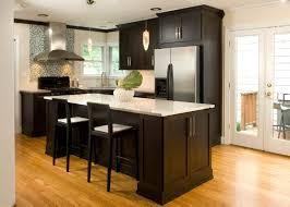 Dark Espresso Kitchen Cabinets by Kitchens With Dark Cabinets Classic Mid Century White Wooden