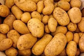 pommes de terre en robe de chambre les pommes de terre en robe de chambre