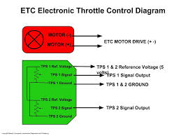 electronic throttle motor wires identification youtube
