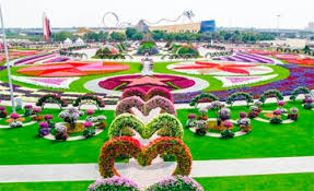 world u0027s largest natural flower garden opens in dubai