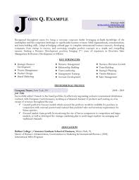 business resume template free index of templates