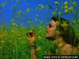 Blind Melon Lyrics No Rain 56 Best Music Is A Very Soulful Thing Blind Melon Images On
