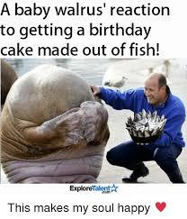 Walrus Meme - 25 best memes about walrus walrus memes