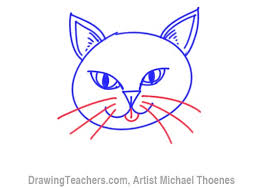 how to draw a cat face easy image mag