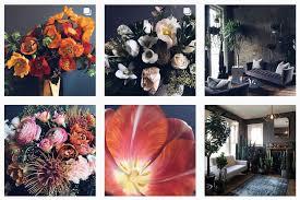 Flower Shops by Plant U0026 Flower Shops In Nashville Nashville Guru