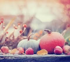 our warmest gratitude this thanksgiving season