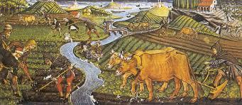 imagenes de animales y cosas personas animales y cosas amberes