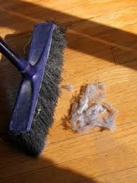 best 25 best broom ideas on organization