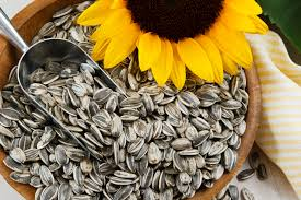 can you eat too many sunflower seeds lovetoknow