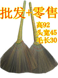 transgene thickening broom wood floor bristle