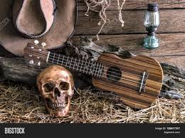still life human skull and ukulele on hay with traditional leather
