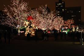 Lights At Lincoln Park Zoo by Christmas Date Zoo Lights At Lincoln Park Zoo Stile Foto Cibo