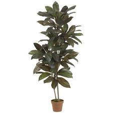 nearly natural real touch 5 ft green cordyline silk plant 6580
