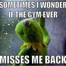 Gym Life Meme - goals the week of mlk