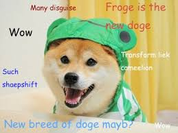 How To Make A Doge Meme - the travelling taxonomist i m tired of the doge meme someone