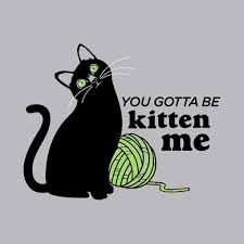 You Gotta Be Kidding Me Meme - you gotta be kitten me tshirtvortex