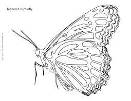 monarch butterfly coloring pages chuckbutt com
