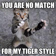 Fu Meme - no match martialartsmemes com