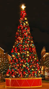 575 best trees and lights images on world