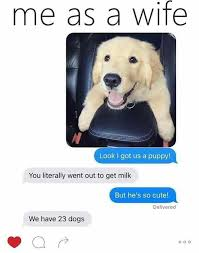 Dog Girlfriend Meme - not as a wife but i m literally like this hahahaha funny