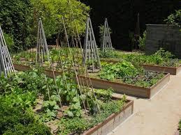 kitchen garden design ideas plant the gardens and layout by the kitchen garden design ideas