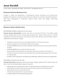 financial service resume free resume example and writing download