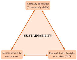 sustainability free full text applications of the standardized