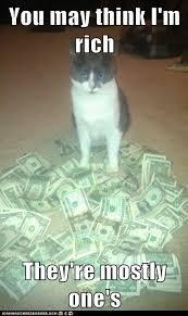 Rich Cat Meme - i can has cheezburger dollar funny internet cats cat memes
