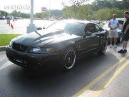 Blacked Out Mustang For Sale 2004 Ford Svt Mustang Cobra For Sale Maryville Tennessee