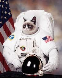 Cat Suit Meme - cat astronaut pics about space