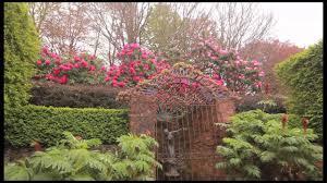 native plant nursery melbourne cloudehill nursery u0026 gardens melbourne u0027s dandenong ranges youtube