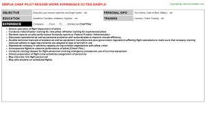 chief pilot resume sample