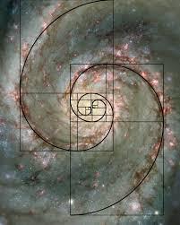 whirlpool galaxy the whirlpool galaxy 1645x2050 os rebrn com