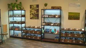 Weed Maps San Diego by Illegal Pot Delivery Services Stealing Business From Legal